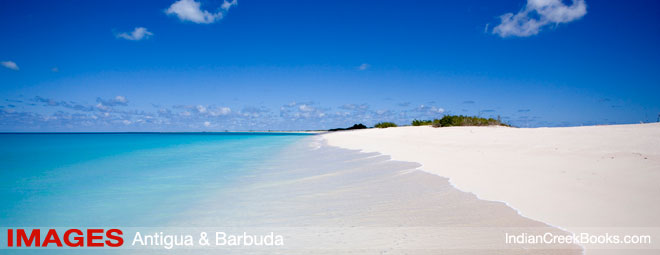 Barbuda Alexis Andrews